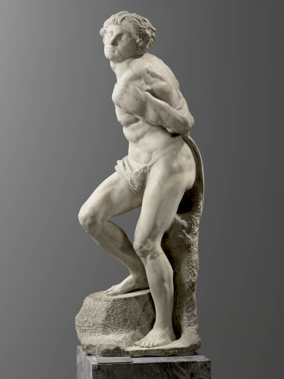 Michelangelo, Captive (The Rebellious Slave)